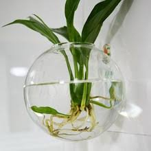 buy terrarium glass containers and get free shipping on aliexpress com