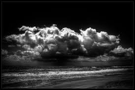 black white robert santafede photography life goes on a and nature