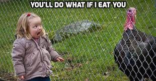 Funny Turkey Memes - funny thanksgiving whatsapp memes