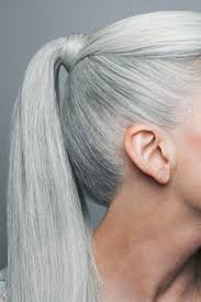 mature pony tail hairstyles mature woman with long straight silvery grey hair in a ponytail
