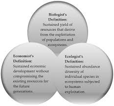 sustainability free full text sustainable development factors