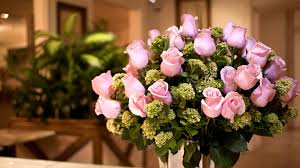 Meaning Of Pink Roses Flowers - pink rose desktop wallpapers 72 wallpapers u2013 hd wallpapers