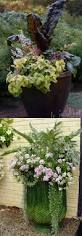 Container Gardening Flowers 753 Best Container Gardening Ideas Images On Pinterest Potted