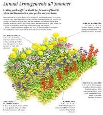 Best Garden Layout Annual Garden Ideas Annual Flower Garden Designs On Annual Cut