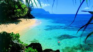 Hawaii backgrounds 49 wallpapers adorable wallpapers