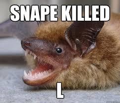 Bat Meme - wrong spoiler bat memes quickmeme