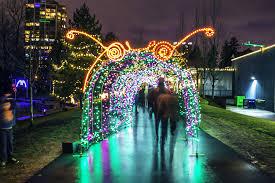 free display in coquitlam illuminates lafarge lake with 100 000 lights