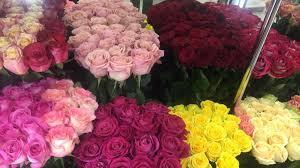 send roses send roses to yerevan armenia