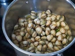 cuisiner les coques coques marinières recette des coques marinières recette par chef