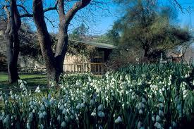 Ucr Botanical Gardens Botanic Gardens Room Rental