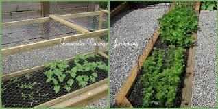 Deer Proof Fence For Vegetable Garden Lavender Cottage Mosaic Monday 34 The Postage Stamp Vegetable