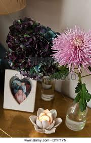 Lotus Flower Tea - lotus flower and candle light stock photos u0026 lotus flower and