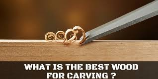 what is the best wood for carving here are 4 of the best ones for