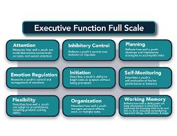 cefi comprehensive executive function inventory multi health