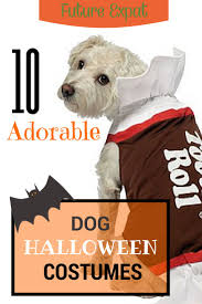11 best dog costumes images on pinterest animals costumes and