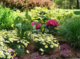 Rock Garden Pictures Ideas Plans Exles New Jersey Perennial Garden Perennial Flowers New Jersey New