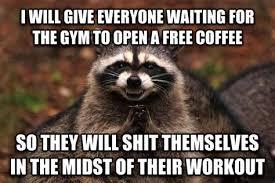 Evil Raccoon Meme - evil raccoon meme