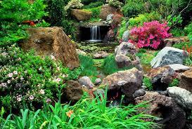 waterfalls greenery summer garden cascades stones nature park