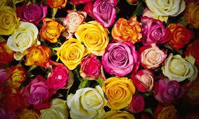 Bouquet For Wedding Tinksky Artificial Silk Hydrangea Bridesmaid Flower For Wedding