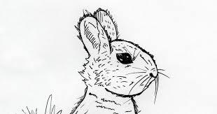 jared unzipped draw something bunny rabbit