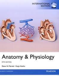 Human Anatomy And Physiology Marieb Hoehn 9780321861580 Anatomy U0026 Physiology 5th Edition Abebooks