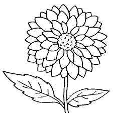 dahlia flower bloom coloring pages for kids n2 printable