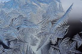 ferning pattern in spanish window frost also called fern frost or ice flowers forms when a