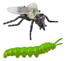 spirit halloween jumping spider amazon com safari ltd insects toob u2013 comes with 14 toy figurines