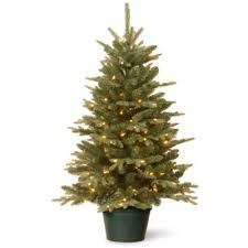 buy 3 pre lit trees from bed bath beyond