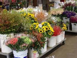wholesale flowers san diego carlsbad
