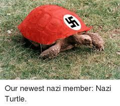 Turtle Memes - our newest nazi member nazi turtle meme on sizzle