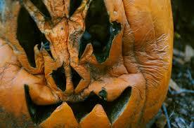 file cucurbita pepo halloween carved pumpkin a few days after