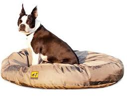 Tough Dog Bed 4 Best Chew Proof Dog Beds For Rough Chewers