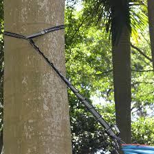 amazon com hammock straps with free carabiner hooks u0026 adjustable