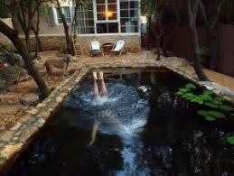 going au natural naturalized swimming pools and wildlife ponds in