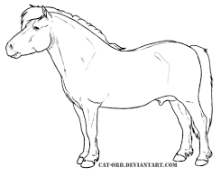 real pony coloring pages shetland pony coloring page free printable coloring pages