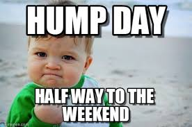 Wednesday Hump Day Meme - hump day success kid original meme on memegen