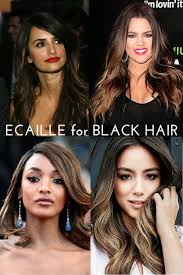 ecaille hair ecaille for black hair swati teerdhala