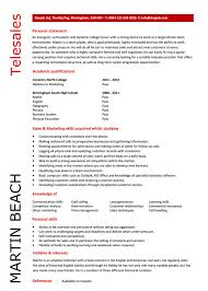 Resume Format Sales And Marketing 10 Sales Resume Templates Free Word Pdf Psd Samples