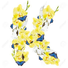 letter k orchid and butterfly isolated on white background