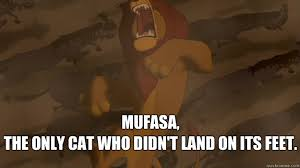 Mufasa Meme - mufasa the only cat who didn t land on its feet mufasa quickmeme