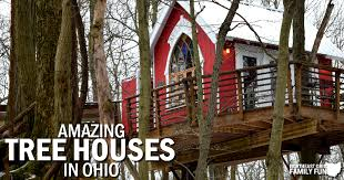 Amazing Tree houses in Ohio  Including Video Tour of the Moonlight