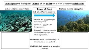 Describe It by Science 1 12 Ecosystems Do Now Write Down What You Think The