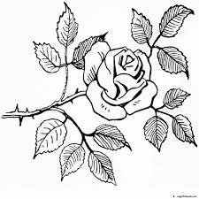 imagenes para colorear rosas dibujos de rosas para colorear pintar e imprimir colorear website