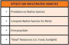 day 4 online exploration aquatic invasive species a single