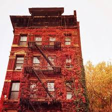 East Village Bed And Coffee 55 Best East Village Vacation With Lania Images On Pinterest New