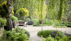 Ventnor Botanic Gardens Coach Welcome At Ventnor Botanic Garden All Year Coach