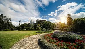 Sydney Botanic Gardens Connecting Sydney S Royal Botanic Gardens Nbn Australia S New