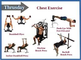 Bench Press Program Chart Best Weight Loss Program In Gym For Men U0026 Women