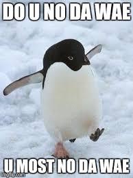Meme Penguin - penguin imgflip